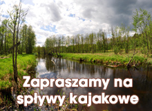 Sp�ywy kajakowe i transport sprz�tu